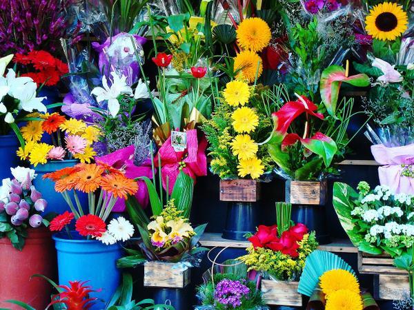 dodatki florystyczne do kwiaciarni