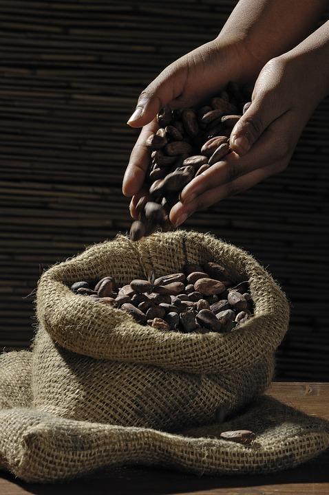 bio kakao sklep