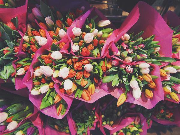 kwiaciarnia online z wrocławia
